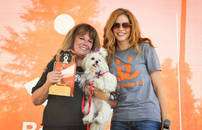 Lhasa Happy Homes at Strut Your Mutt in Los Angeles