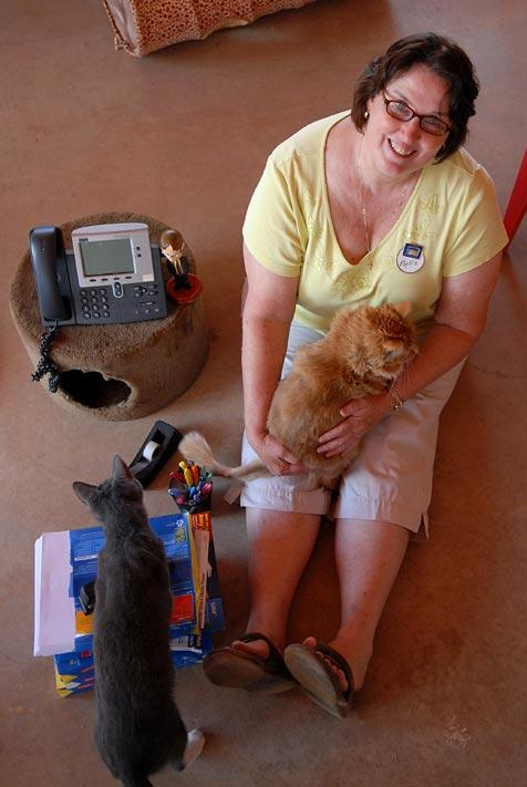 Phyllis Smith playing with cats at Best Friends Animal Sanctuary