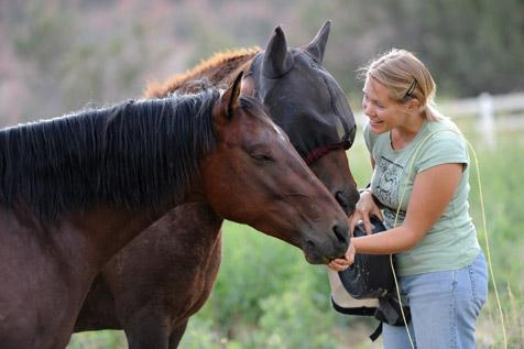 Caregiver with two horses at Best Friends Animal Sanctuary