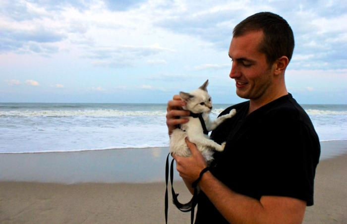 Max, a white cat who was adopted during the 9 Lives for $9 cat adoption promo from the Cat Network in Miami, with his new dad