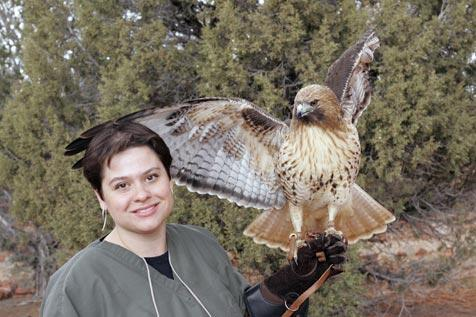Woman holding a wild falcon