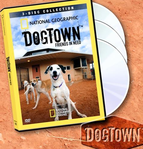Can't get enough 'DogTown'?