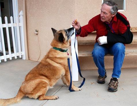 Jim Shields, with a broken wrist, interacting with a dog at Best Friends Animal Sanctuary