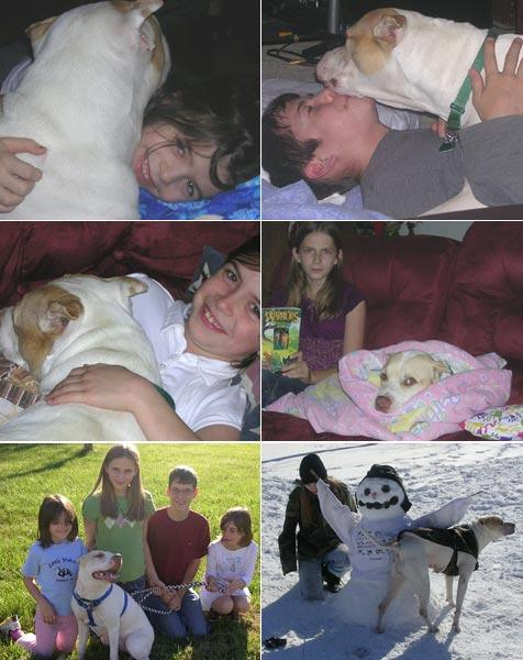 A pit bull happy-ever-after. Photos of pit bull with her new adoptive family.