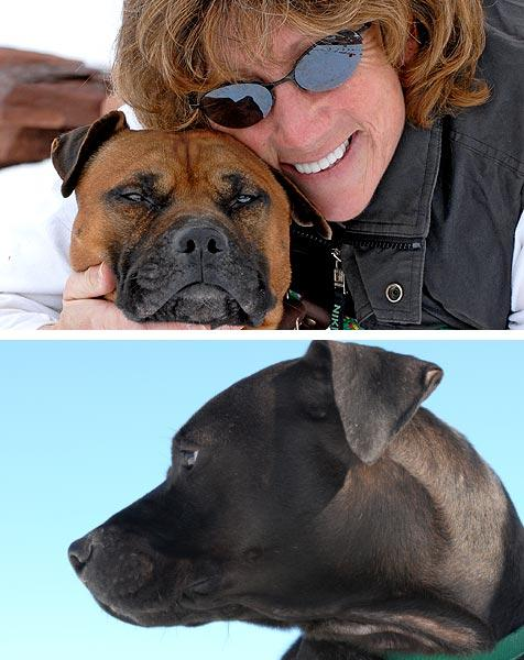 Vicktory dogs and woman