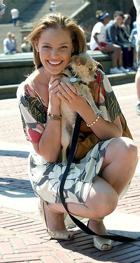 Actress Katherine Heigl and small dog