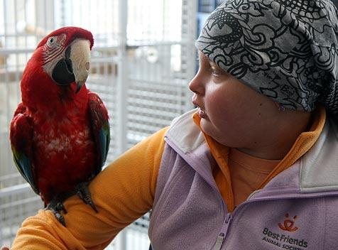 Jenny Boxer, whom the Make-A-Wish Foundation helped visit Best Friends, holding a parrot