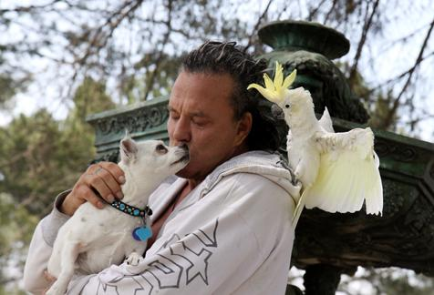 Mickey Rourke with his adopted parrot and his dog