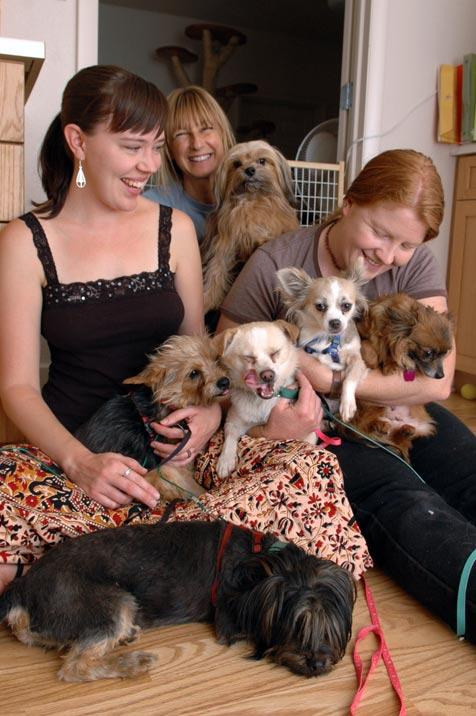 Homeless dogs with Best Friends staff at the Sanctuary
