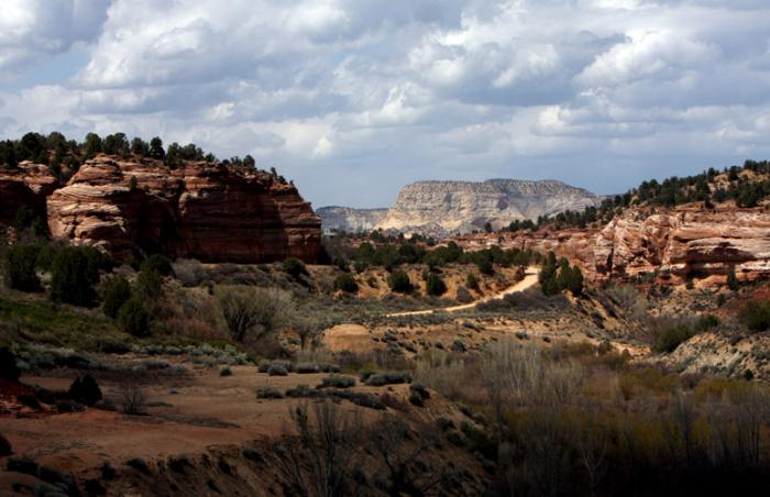 Angel Canyon, where Best Friends Animal Sanctuary is located