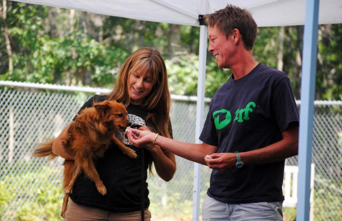 Sherry Woodard consulting at Animal Rescue Fund of the Hamptons
