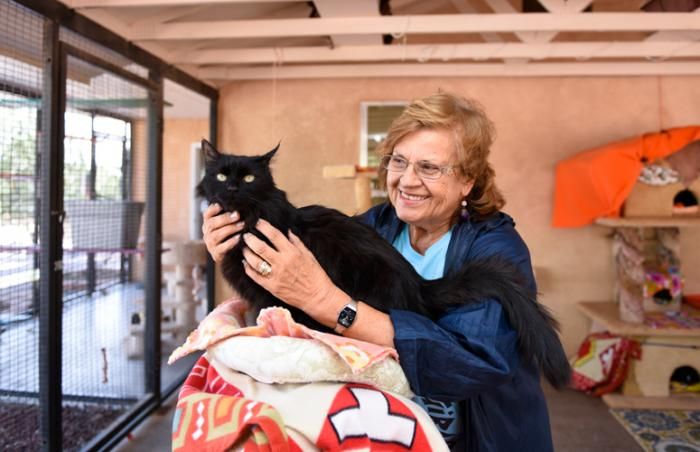 Jane Blythe, 78-year-old volunteer, at Cat World