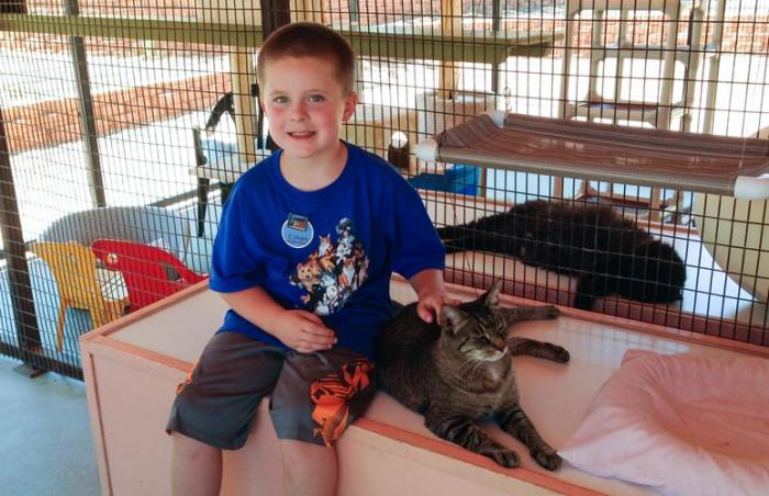 Ethan, a six-year-old boy, making a feline friend at Cat World at Best Friends Animal Sanctuary
