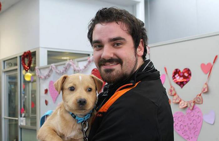 "One of the lucky puppies from ""The One"" adoption program on Valentine's Day at Dallas Animal Services and Adoption Center"