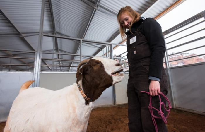 University student returns to Best Friends for animal sanctuary internship