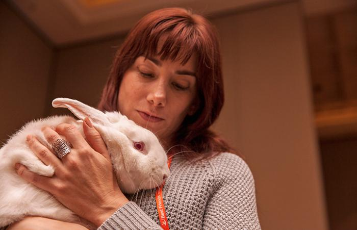 Norah the rabbit being held by a woman