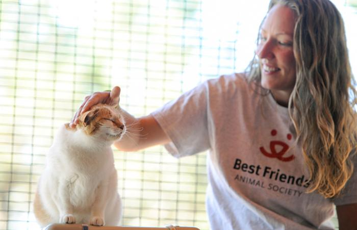 Sicilly the asthmatic cat with Amy the caregiver