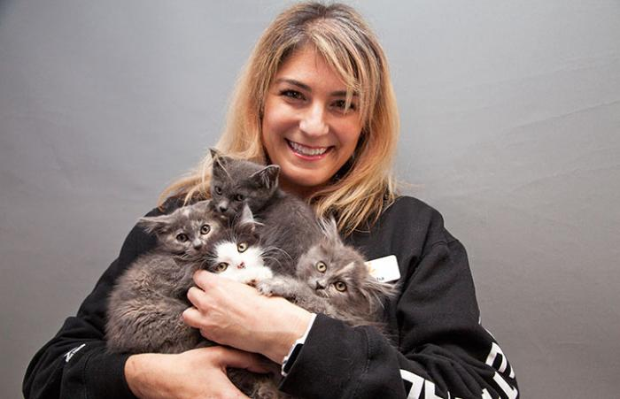 Samantha Bell DiGenova with the Charlies Angeles kittens