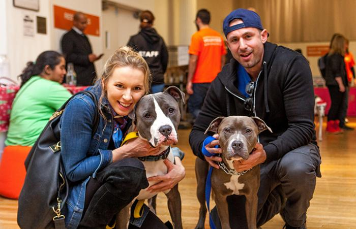Baloo and Tico at the Best Friends Super Adoption in New York City