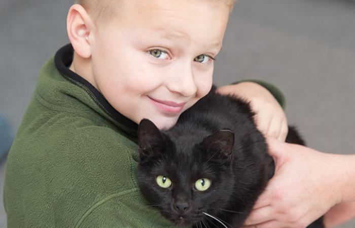 Sugar Plum the cat with FIV with Landon