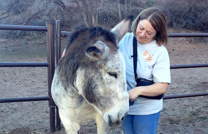 Volunteer Tracey Lacka volunteering at Horse Haven