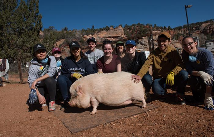 The Concord Academy student volunteers at Piggy Paradise