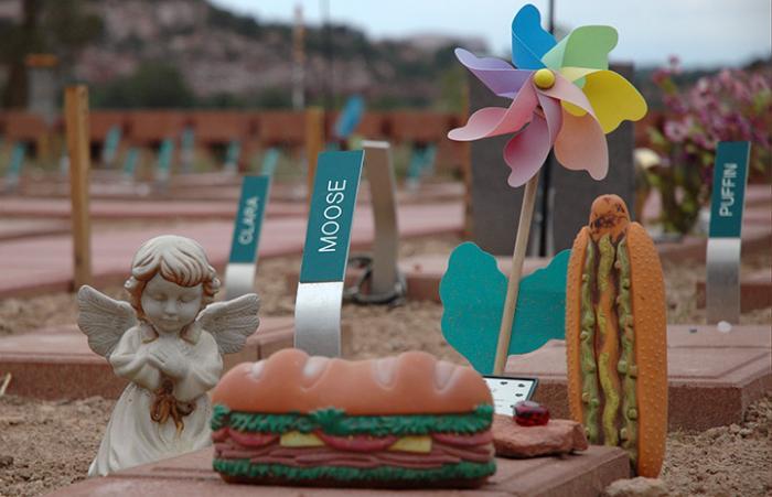 Angels Rest place marker for Moose