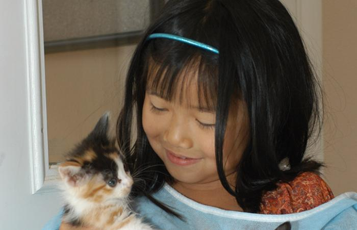 Young volunteer Beth with kittens
