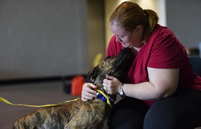 Marmaduke the young hound mix is reunited with Diana Brown after Hurricane Harvey