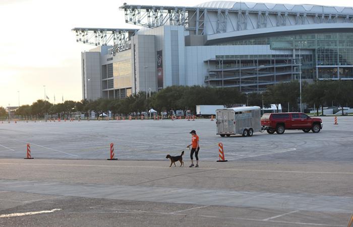 Kelli Harmon walking a dog outside the NRG Arena