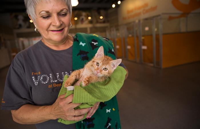 Becky Pickle holding an orange tabby kitten