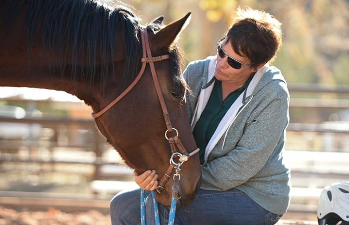 Horse Haven trainer Linda Alvey is retraining Wire