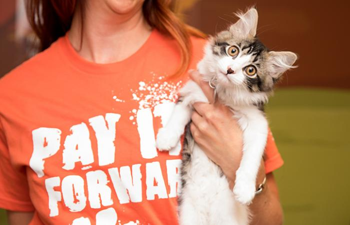 Woman wearing a Pay It Forward T-shire and holding a tabby and white kitten