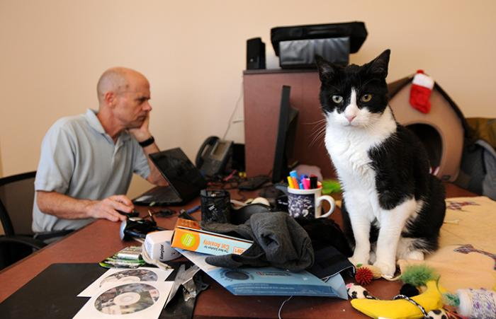 Devin the black and white cat sitting on a desk next to Dr. Frank