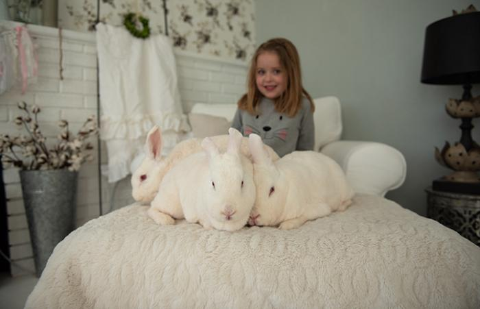 Five-year-old girl Diem with her three newly adopted white rabbits