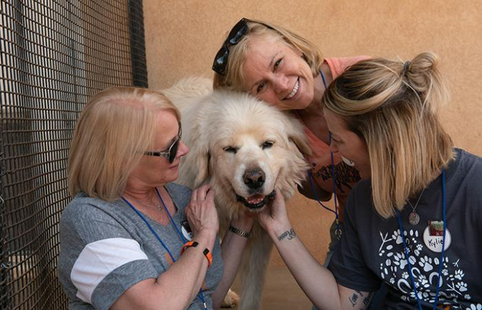 Three volunteer women, Elaine Benedetti, Vicki Tague and Kylie Otto, posing with Mr. Buddy a white dog