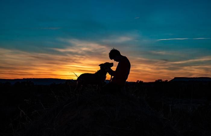 Silhouette of person and dog with a sunset behind them