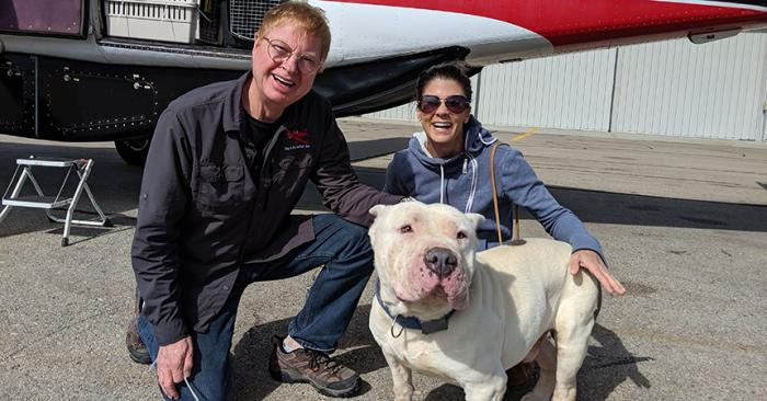 Walter the white mastiff dog with Melissa and a man in front of a transport plane
