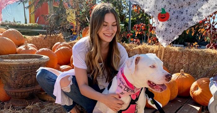 Delilah the deaf pit bull with a woman in a pumpkin patch