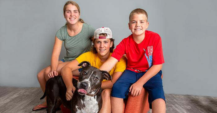 Adonis the senior dog with his new family