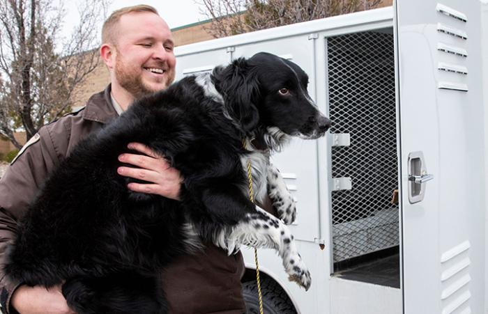 Animal control officer lifting a black and white dog up into his truck