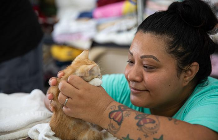 Woman with tattooed arm holding a small orange tabby kitten