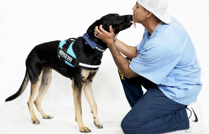 Man from Paws for Life Canine K9 Rescue program kneeling by a dog who is wearing a service dog vest and kissing his face