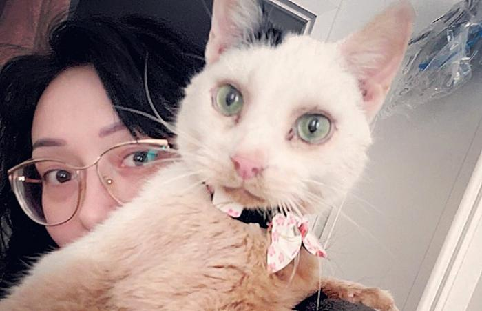 Selfie of woman with Sky the cat who is wearing a collar with a bow