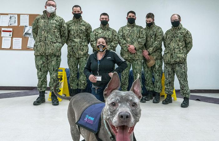 Smiling brindle dog with tongue out in front of a group of people wearing masks and camouflage outfits