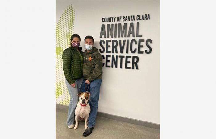 Roscoe the dog being adopted from County of Santa Clara Animal Services