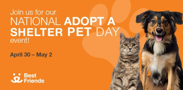 National Adopt a Shelter Pet Day promotion with a tabby cat and puppy, April 30 – May 2, and Best Friends logo