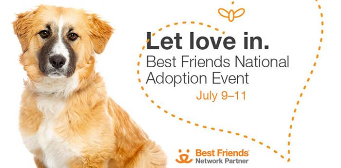 Brown dog with some white and black next to text, Let love in. Best Friends National Adoption Event July 9-11