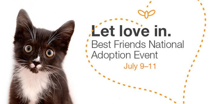 Black and white kitten with text, Let love in. Best Friends National Adoption Event July 9-11