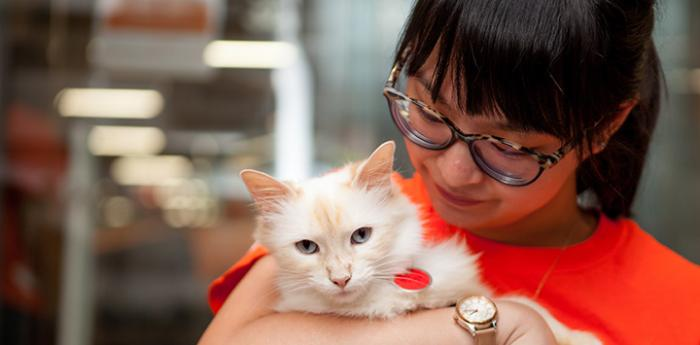 Woman wearing glasses and an orange T-shirt holding a flamepoint cat